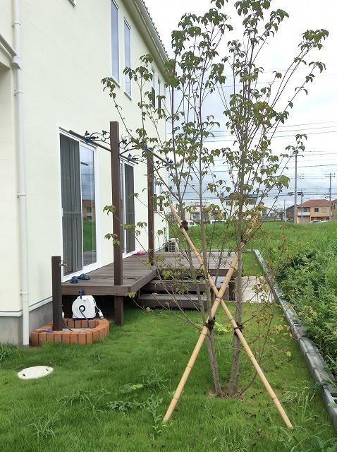 庭のウッドデッキ(ウリン)と水栓。